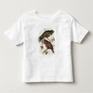 Trogon Collaris Toddler T-Shirt