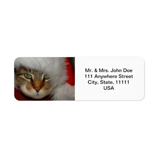 """Trooper The Cat"" Sandpaper Kisses Address Labels"