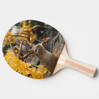 Trophy Deer Ping Pong Paddle
