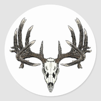 Trophy Whitetail buck Round Sticker