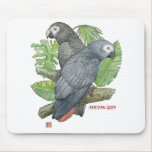 Tropical African GreysMouse Pad Mouse Pad