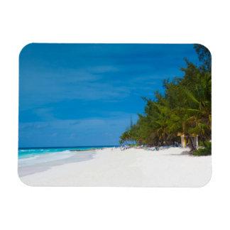 Tropical Beach in Barbados Rectangular Photo Magnet