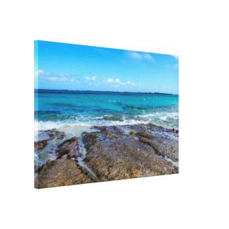 Tropical Beach&Ocean Shore Canvas Print