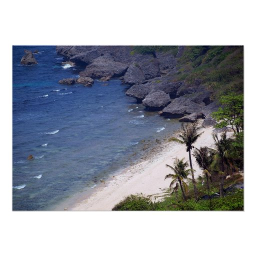 Tropical Beach on a Secluded Island Poster