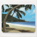 Tropical beach painting mouse pad