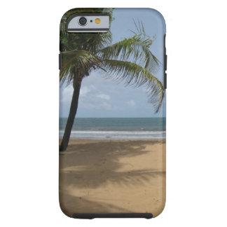 Tropical Beach Palm Tree Tough iPhone 6 Case