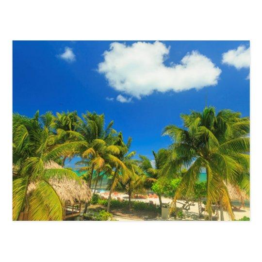 Tropical beach resort, Belise Postcard