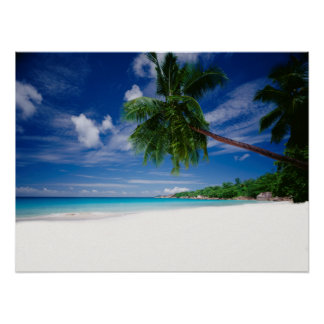 Tropical Beach | Seychelles Poster