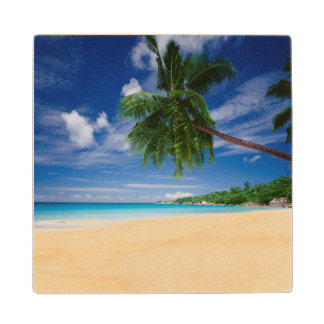 Tropical Beach | Seychelles Wood Coaster