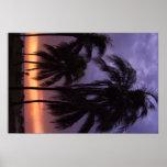 Tropical Beach Sunset Print