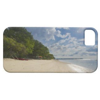 Tropical Beach With Sunrise Barely There iPhone 5 Case