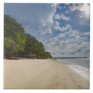 Tropical Beach With Sunrise Large Square Tile