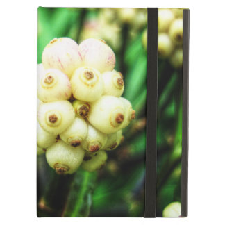 Tropical berries 2 iPad air cover
