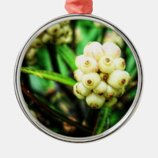 Tropical berries 2 Silver-Colored round decoration