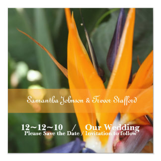 Tropical Bird of Paradise Wedding Announcements
