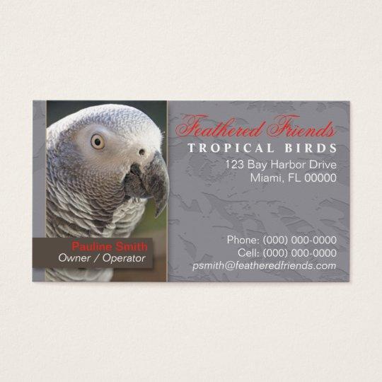 Tropical Birds Business Card