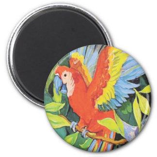 Tropical Birds Designs Magnets