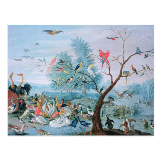 Tropical birds in a landscape postcard