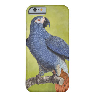 Tropical Birds Vintage Parrot Illustration Barely There iPhone 6 Case