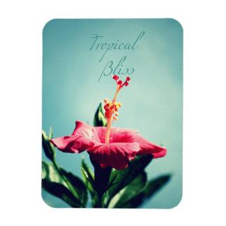 Tropical bliss rectangular photo magnet