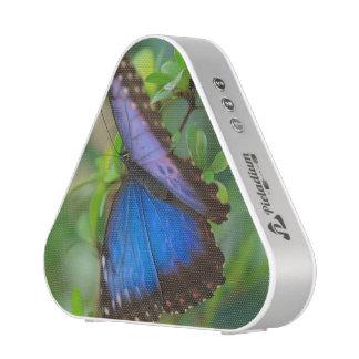Tropical Blue Purple Butterfly