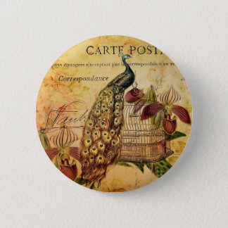 tropical botanical orchid modern vintage peacock 6 cm round badge