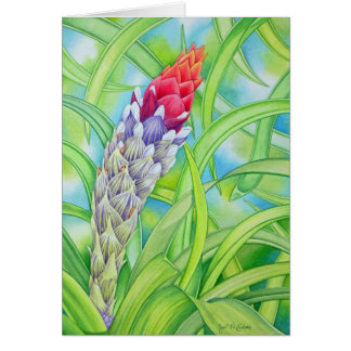 Tropical Bromeliad Card