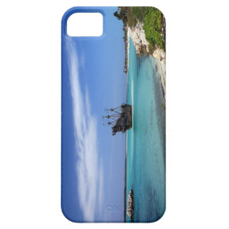 Tropical Caribbean Pirate Ship iPhone 5 Covers