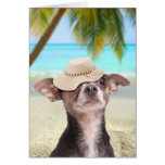 Tropical chihuahua on vacation greeting card