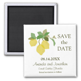 Tropical Citrus Save The Date Magnet