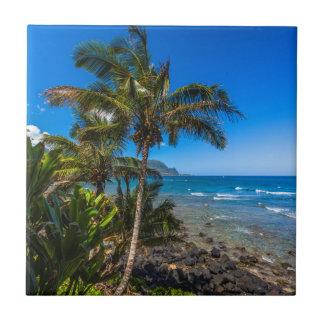 Tropical coastline tile