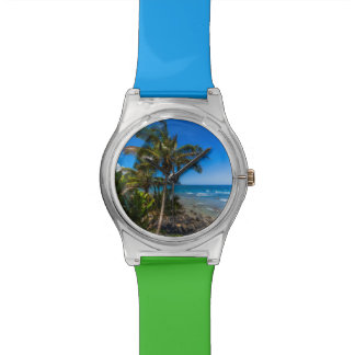Tropical coastline watch