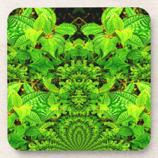 Tropical Curiosity Abstract Design Coasters