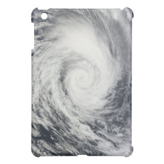 Tropical Cyclone Dianne 2 Case For The iPad Mini