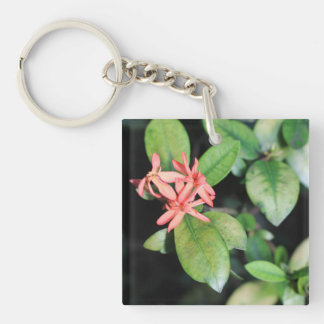 Tropical Exotic Coral Flower, Kew Acrylic Key Ring