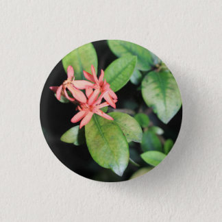 Tropical Exotic Coral Flower, Kew Gardens Badge