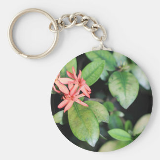 Tropical Exotic Coral Flower, Kew Gardens Key Ring Basic Round Button Key Ring