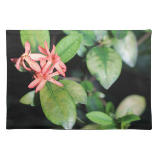 Tropical Exotic Coral Flower, Kew Gardens Placemat