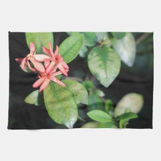 Tropical Exotic Coral Flower Kew Gardens Tea Towel