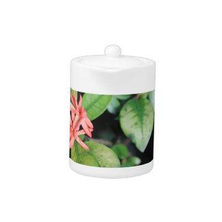 Tropical Exotic Coral Flower, Kew Gardens Teapot