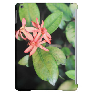 Tropical Exotic Coral Flower, Kew iPad Air Case