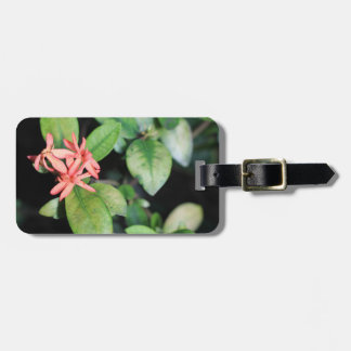 Tropical Exotic Coral Flower, Kew Luggage Tag