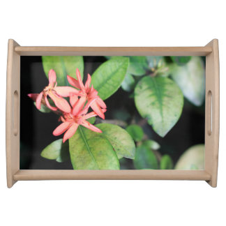 Tropical Exotic Coral Flower, Kew Serving Tray
