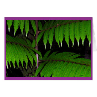 Tropical Ferns Card
