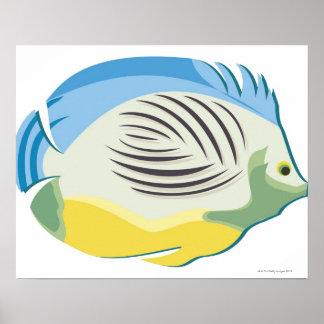 Tropical Fish 2 Poster