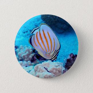 Tropical Fish 6 Cm Round Badge