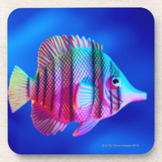 Tropical Fish Beverage Coaster