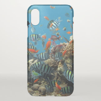 Tropical Fish Chaos iPhone X Case