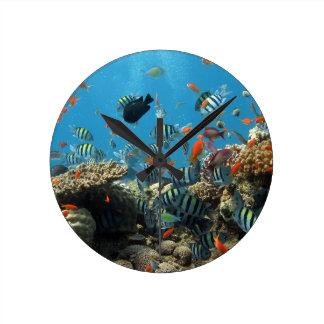 Tropical Fish Chaos Round Clock