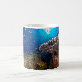 Tropical Fish Great Barrier Reef Coral Sea Basic White Mug